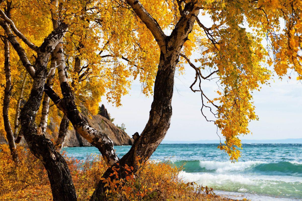 Auch im Herbst zeigt sich der Baikalsee von seiner schönsten Seite, Russland - © alet / Shutterstock