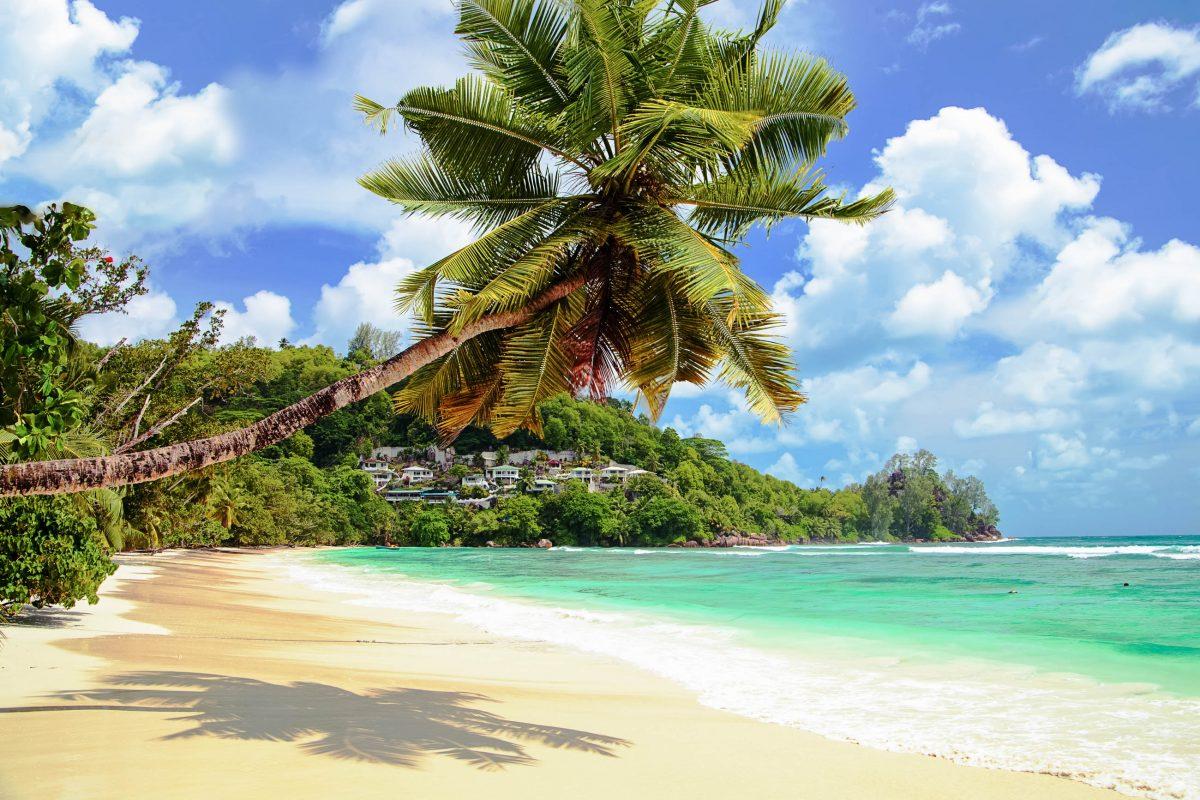 Der Anse Gouvernment befindet sich im Südosten von Praslin; Schwimmen ist hier ohne Gefahr möglich und auch Wassersportmöglichkeiten sind vor Ort vorhanden, Seychellen - © sashahaltam / Shutterstock