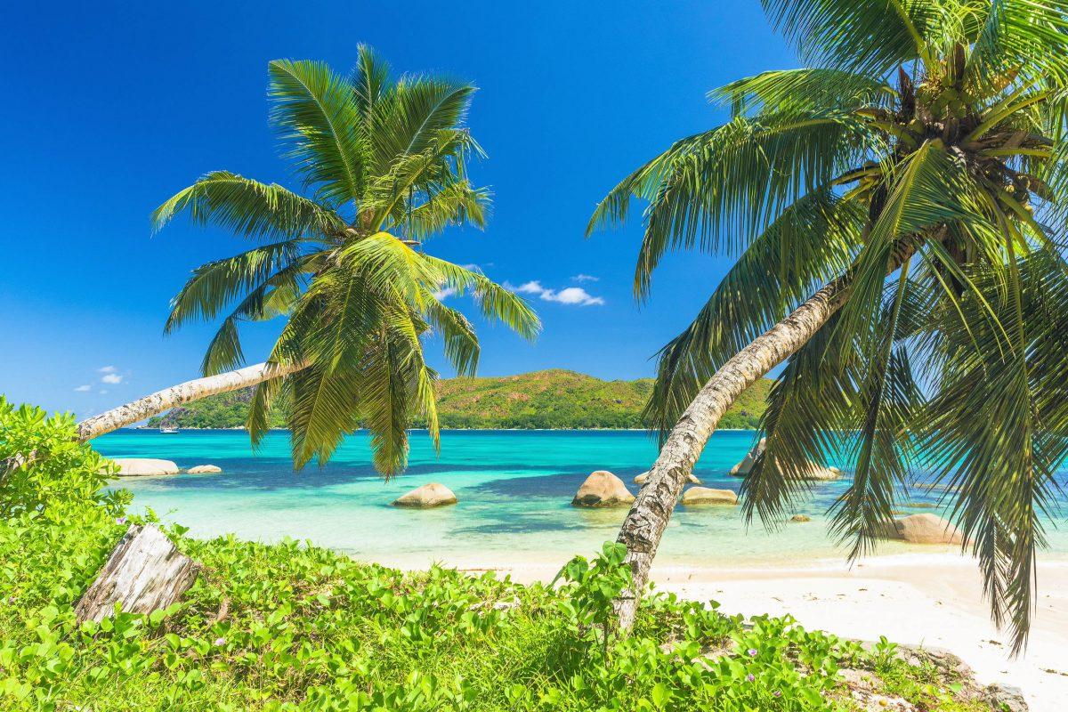 Der schlanke Küstenstreifen des Anse Boudin auf Praslin liegt in der Nähe der Küstenstraße, die auch zum Anse Lazio führt, Seychellen - © Filip Fuxa / Shutterstock