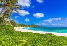 Für den Anse Kerlan auf der Seychellen-Insel Praslin kann beim Hotel Lémuria eine Genehmigung beantragt werden oder man reist mit dem Boot an - © Simon Dannhauer / Shutterstock