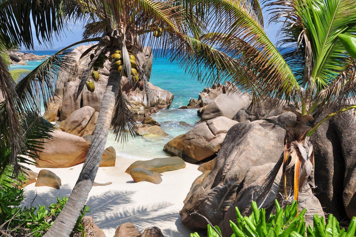 Sein puderweicher weißer Sand und das absolut ruhige Meer machen den Anse Patates zur perfekten Destination für Schnorchelausflüge in seine fantastische Korallenwelt, Seychellen - © Heide Hellebrand / Shutterstock
