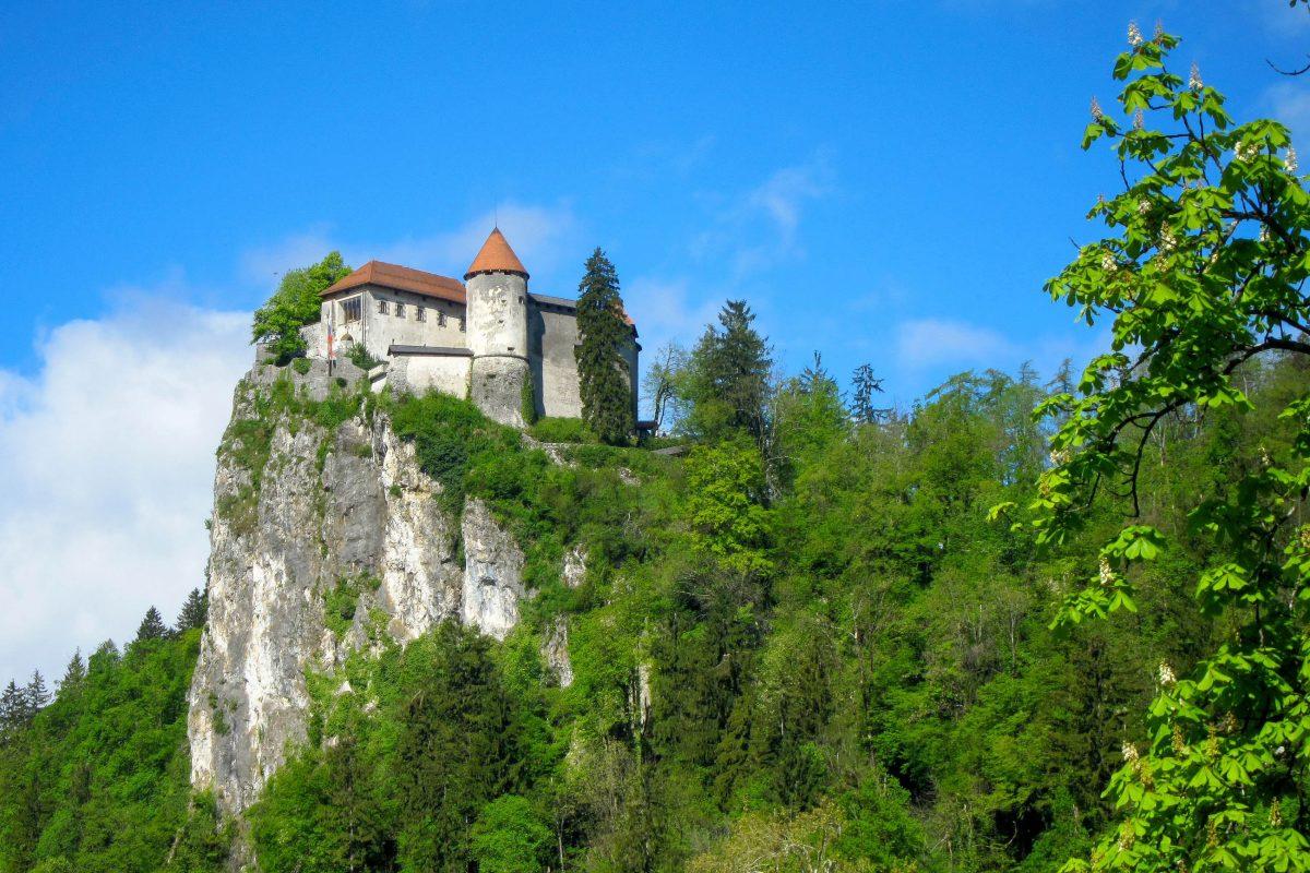 """Die Blejski grad (""""Burg von Bled"""") ist ein Highlight, das man sich bei einem Spaziergang um den Bleder See nicht entgehen lassen sollte, Slowenien - © FRASHO / franks-travelbox"""