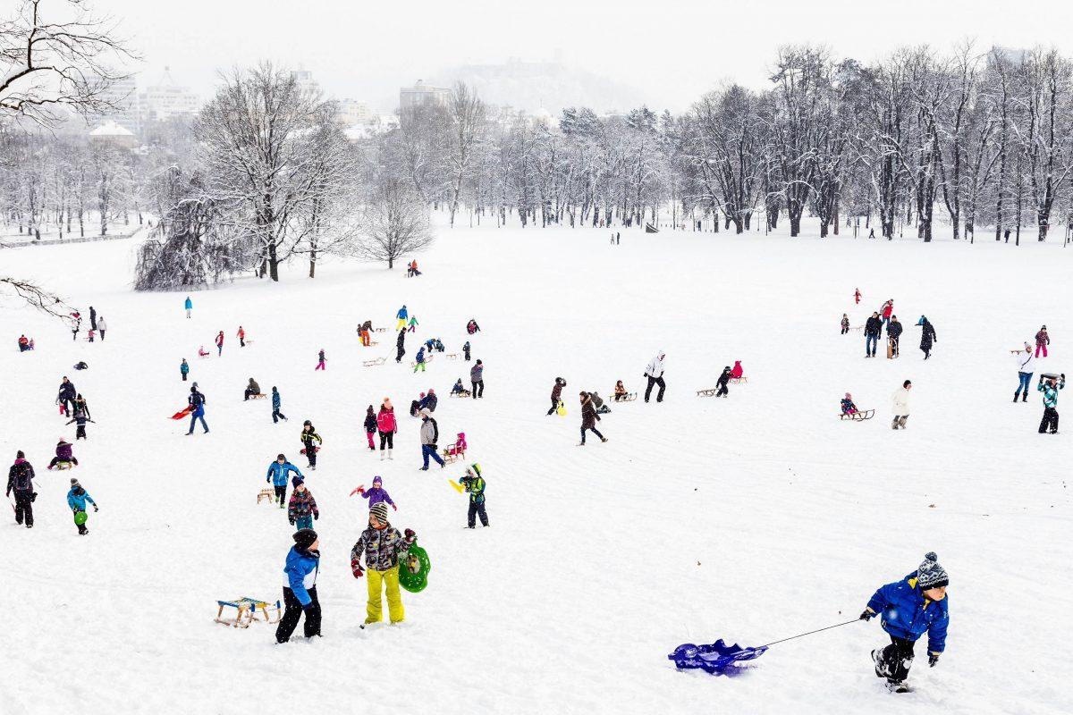 Bilder tivoli park ljubljana slowenien franks travelbox for Fischteich im winter