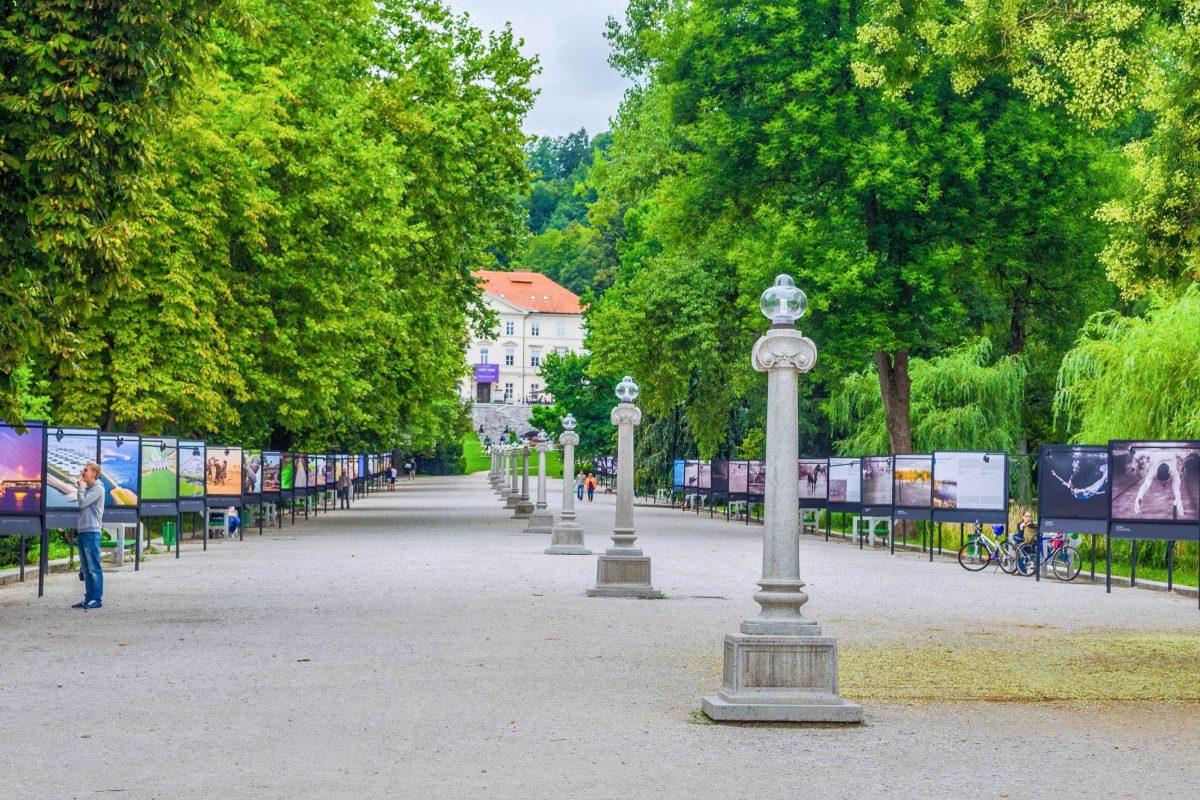 Die Jakopič-Promenade lockt nicht nur Spaziergänger, sondern auch Fotografie- und Kunstinteressierte in den Tivoli Park in Ljubljana, Slowenien - © trabantos / Shutterstock
