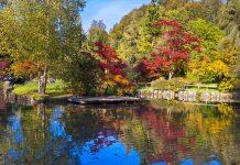 Im Botanischen Garten südlich des Schlossbergs von Ljubljana werden in Slowenien heimische Pflanzen vor dem Aussterben bewahrt - © Matej Kastelic / Shutterstock