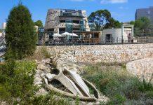 Am Vorplatz des Centre des Visitants de Cabrera in Colònia de Sant Jordi, Mallorca, wird der Besucher von einem Walskelett begrüßt, Spanien - © Lila Pharao / franks-travelbox