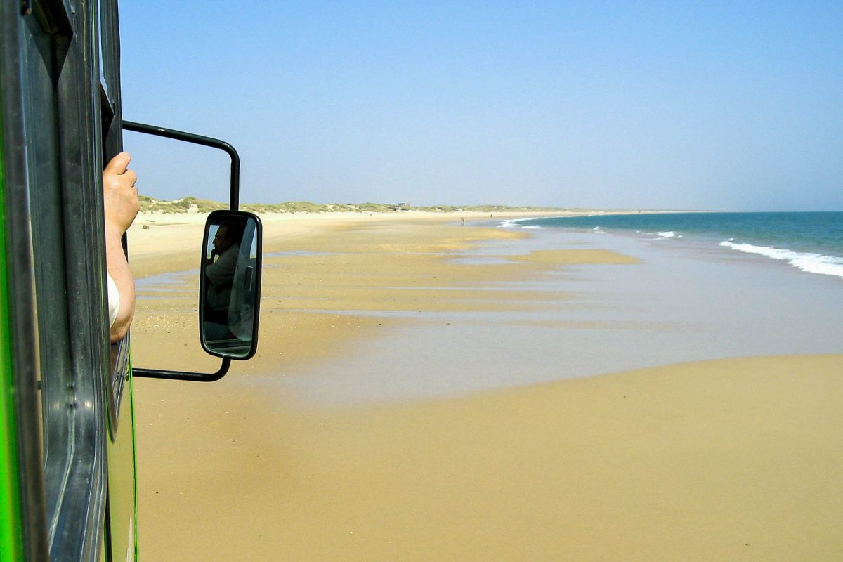 Busfahrt am Strand im Nationalpark Doñana in Andalusien, der durch lauschige Kiefernwälder, meterhohe Sanddünen und eine einzigartige Vogelwelt begeistert, Spanien - © FRASHO / franks-travelbox