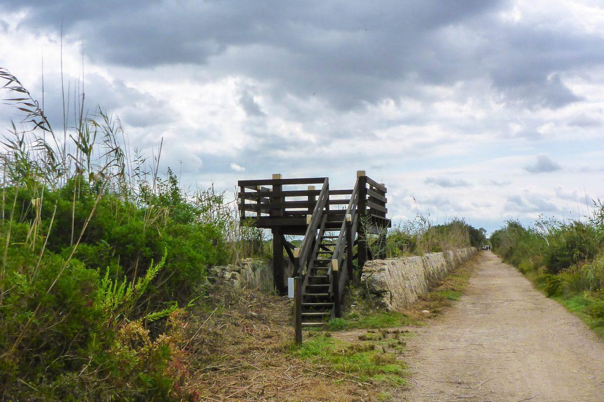 Hochstände und versteckte Holzhütten fungieren als Beobachtungsposten für die zahlreichen Vögel im Parc natural de s'Albufera, Mallorca, Spanien - © Lila Pharao / franks-travelbox