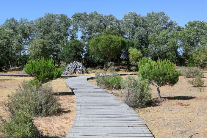 Holzsteg für Besucher im Doñana Nationalpark in Andalusien, Spanien - © Philip Lange / Shutterstock