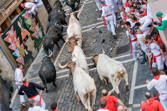 Das traditionelle Stiertreiben beim Sanfermines Festival in Pamplona, Spanien - © Migel / Shutterstock