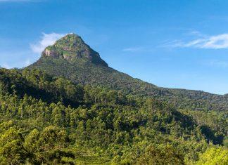 """Blick auf den Gipfel des Sri Pada in Sri Lanka, auch unter der Bezeichnung """"Adam's Peak"""" bekannt - © Nazzu / Shutterstock"""