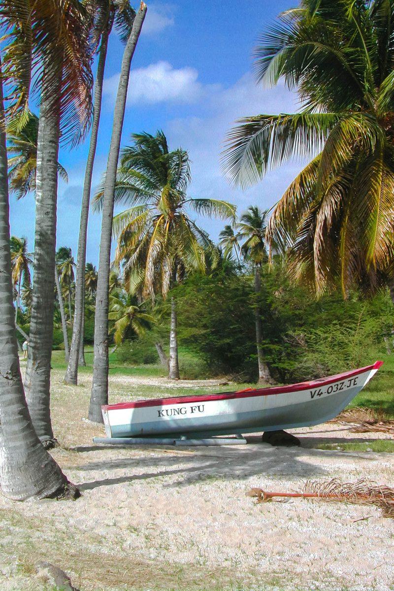 Die goldbraunen Strände von Nevis erfüllen alle charakteristischen Kriterien eines typischen Karibikstrandes, St. Kitts und Nevis - © Danae Trethewey / Shutterstock