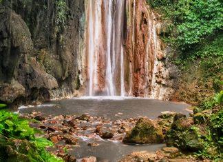 Die Diamond Botanical Gardens auf der karibischen Insel St. Lucia warten mit einer vielfältigen Pflanzenwelt und dem farbenprächtigsten Wasserfall der Karibik auf - © Chris Collins/Shutterstock