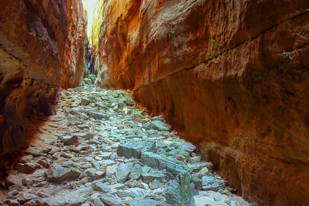 Dramatische Schluchten durchziehen die Cederberg Wilderness Area in Südafrika - © PhotoSky / Shutterstock