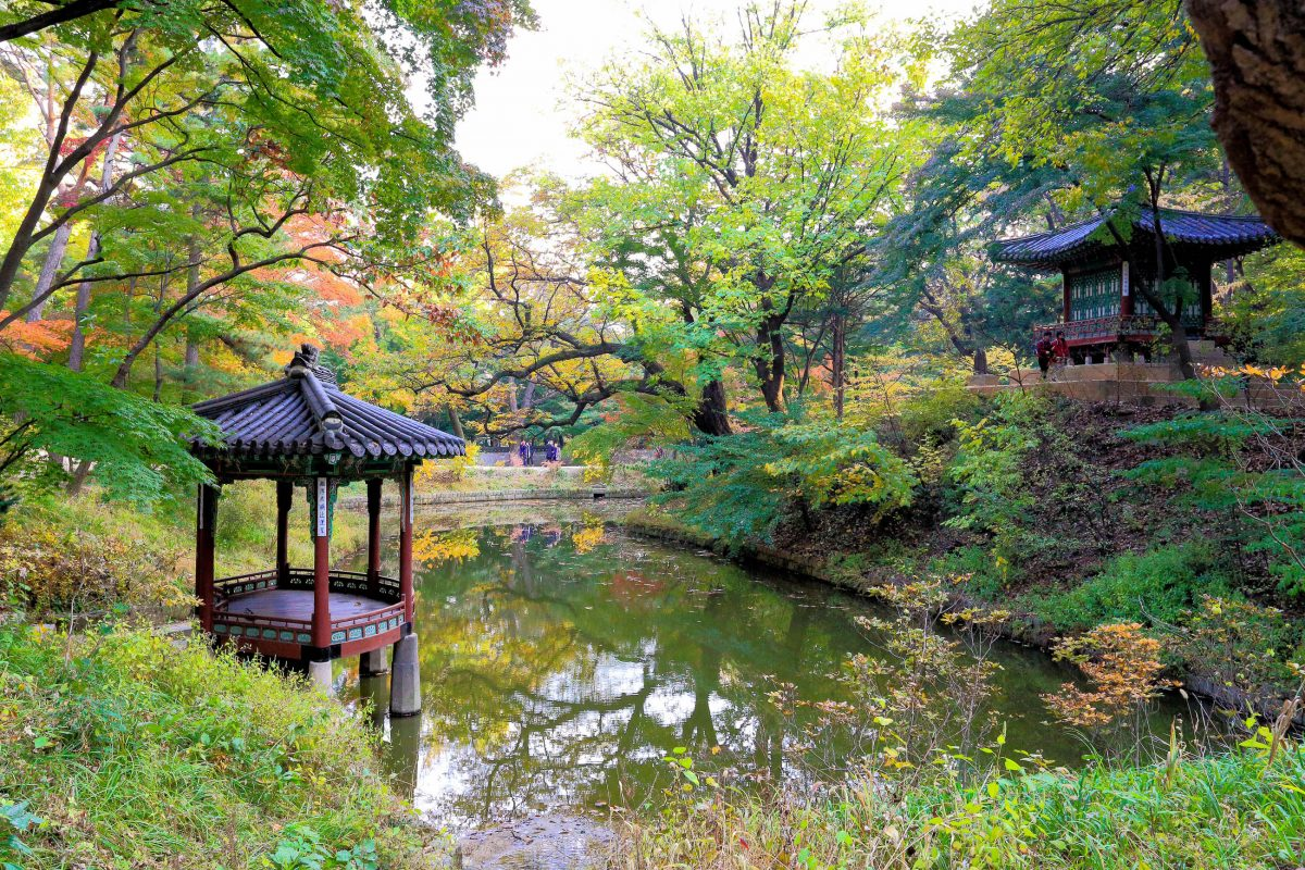 Anstatt sich des natürlichen Geländes zu erwehren schmiegen sich die knapp 30 Pavillons im Garten des Changdeokgung in Seoul perfekt in die hügelige Landschaft ein, Südkorea - © Parinya Chaiwut / Shutterstock