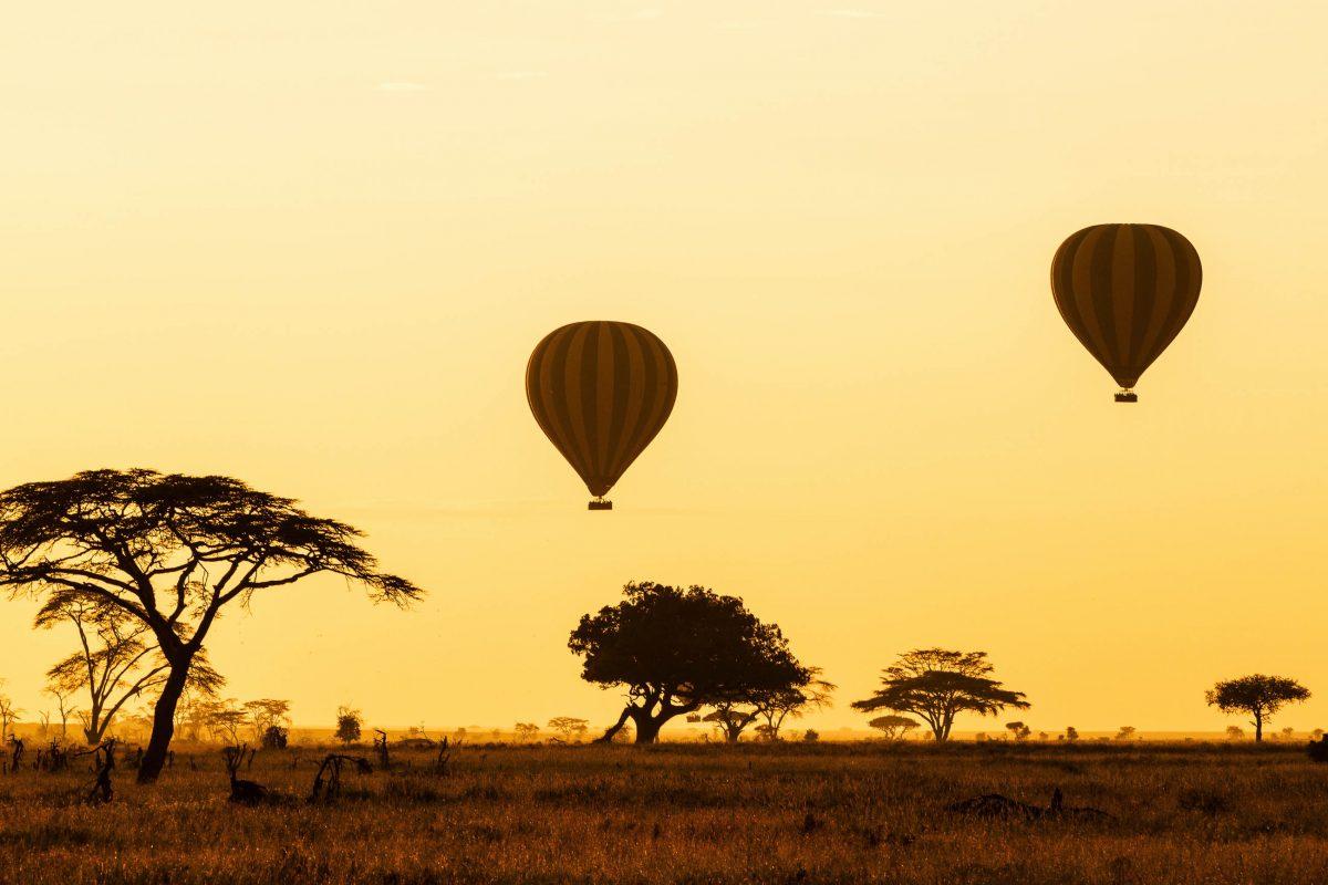 Eine Fahrt mit dem Heißluftballon im Morgengrauen ist die spektakulärste Möglichkeit den Serengeti Nationalpark in Tansania zu erkunden - © Jez Bennett / Shutterstock