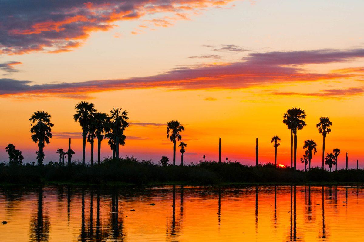 Sonnenunterang am Lake Manze im Selous Wildreservat in Tansania, das seit 1982 zum Weltnaturerbe der UNESCO zählt - © Alexandra Giese / Shutterstock