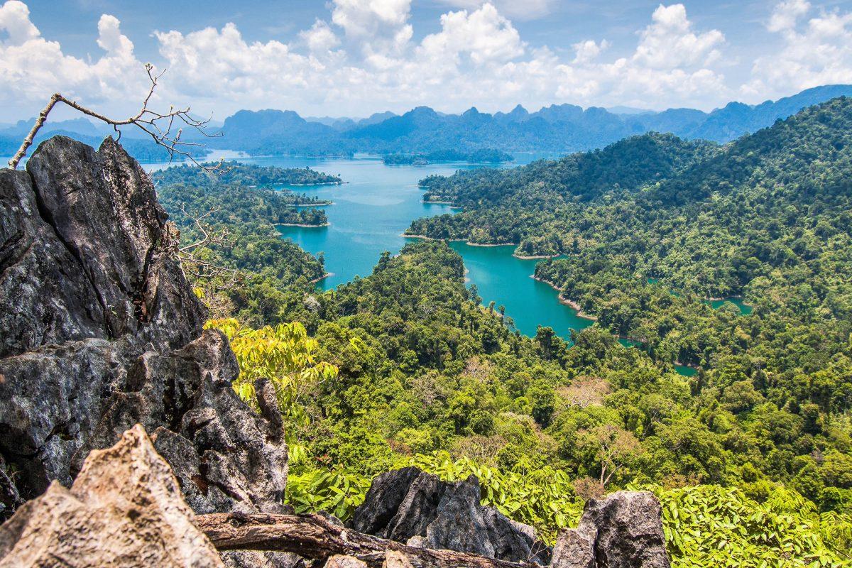 Der Khao Sok Nationalpark in Thailand übertrifft in Bezug auf Artenreichtum sogar das Amazonas-Gebiet - © loca4motion / Shutterstock