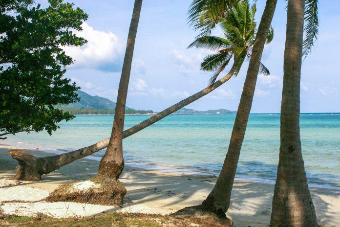 Zu den beliebtesten Stränden auf Koh Samui gehört der Chawaeng Beach, der längste und schönste Sandstrand im Osten der Insel, Thailand - © sspopov / Shutterstock