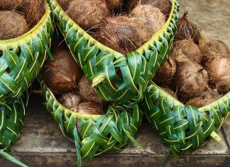 Kunstvoll geflochtene Körbe gehören zu den Handarbeiten, die im Kulturzentrum von Tonga in Nuku'alofa besichtigt werden können - © Mari Anuhea / Shutterstock