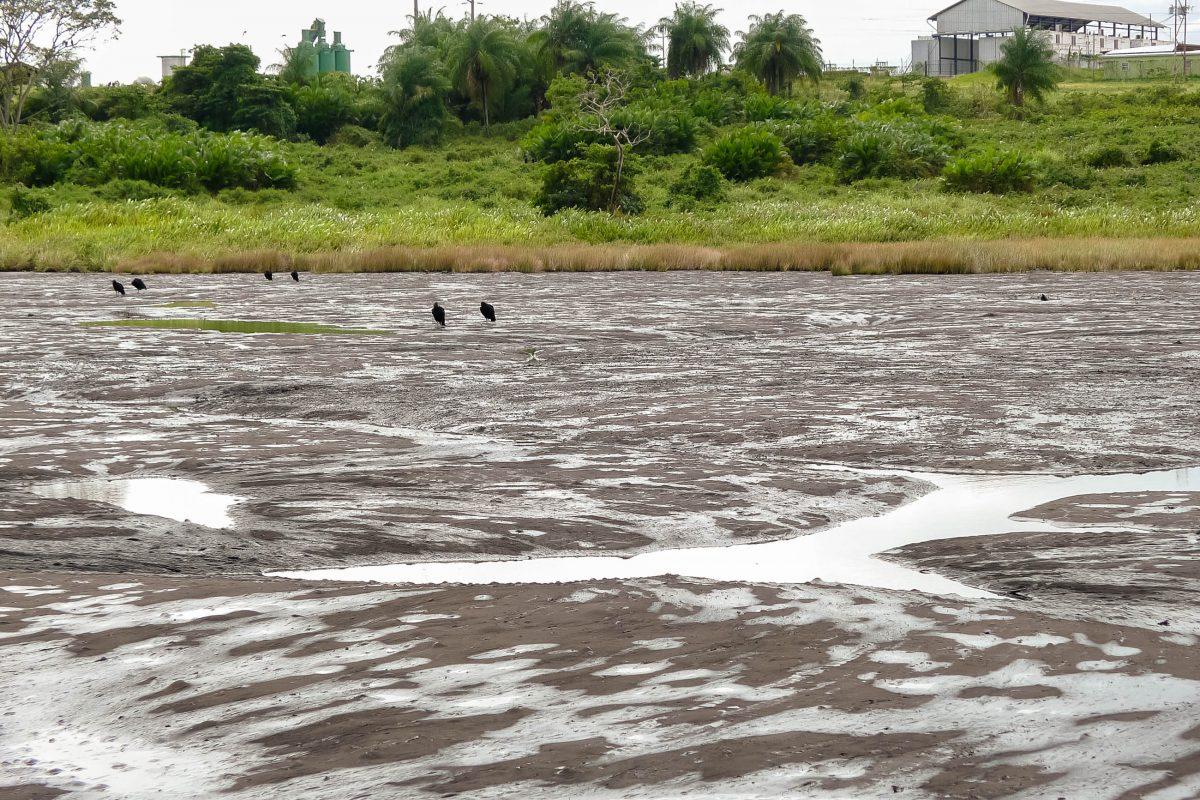 Auf der karibischen Insel Trinidad befindet sich der größte natürliche Asphaltsee der Welt - © CarlUngewitter CC BY-SA3.0/W