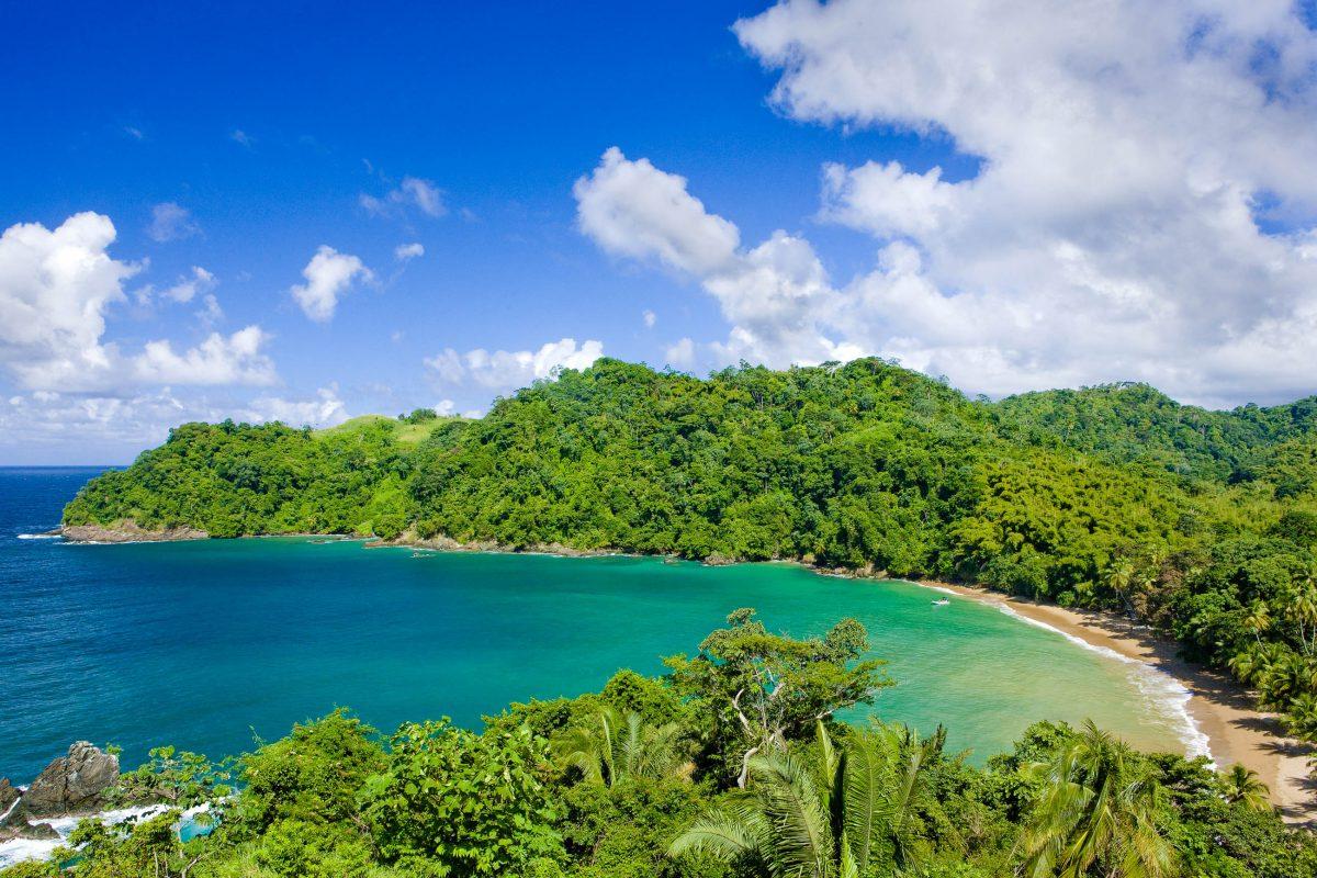 Englishman's Bay ist eine wunderbare Bucht am Rande des Regenwaldes, und ein atemberaubende Schnorchelparadies, Tobago - © PHB.cz (Richard Semik) / Shutterstock