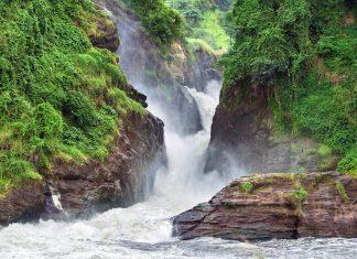 Die Hauptattraktion des Murchison Falls Nationalpark sind die beeindruckenden Wasserfälle, die dem Nationalpark auch seinen Namen gaben, Uganda - © PRILL Mediendesign / Fotolia