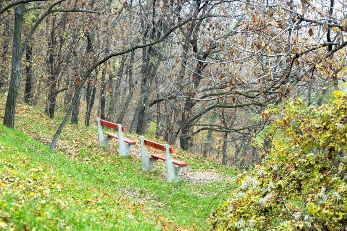 Der Gellért-Berg in Budapest bietet idyllische Parkanlagen und Spazierwege inmitten herrlicher Natur, Ungarn - © James Camel / franks-travelbox