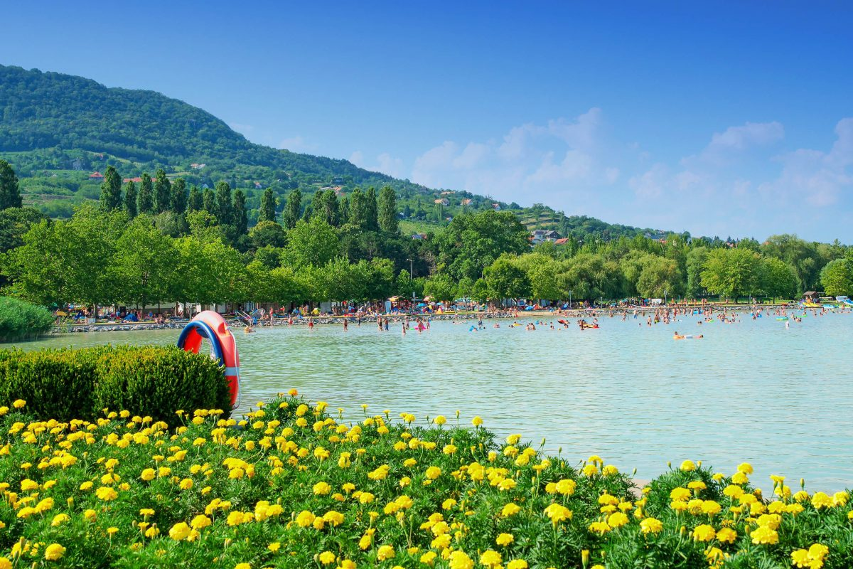 """Die Gegend um Badacsonyörs am Plattensee in Ungarn wird auch """"Balatoner Riviera"""" genannt und ist berühmt für ihren Badacsony-Wein - © pgaborphotos / Shutterstock"""
