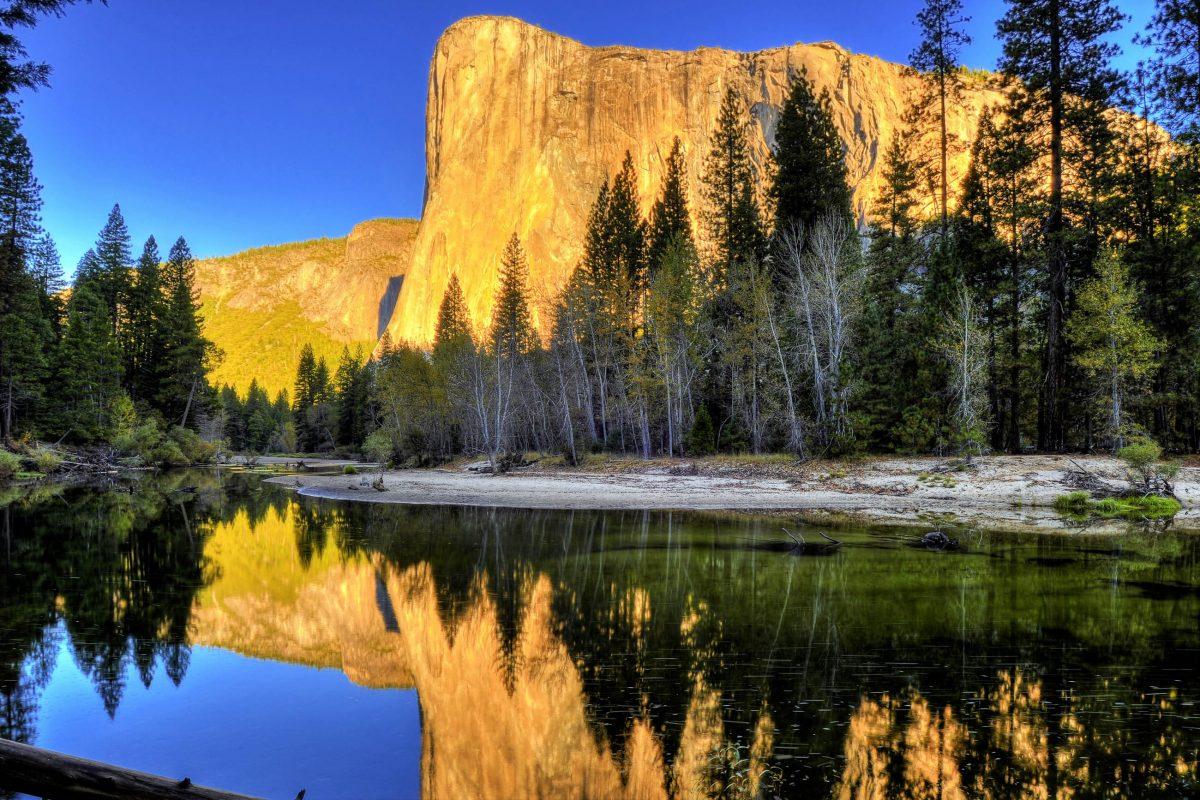 Der hoch aufragende Felsen El Capitan im Yosemite Nationalpark ist ein Magnet für Kletterer aus aller Welt und kann das ganze Jahr über auch von Kletteranfängern bestiegen werden, Kalifornien, USA - © worldswildlifewonders / Shutterstock