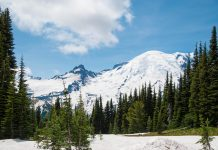 Der Mount Rainier ist ein Vulkan und mit knapp 4.400m Höhe der höchste Berg im Bundesstaat Washington, USA - © James Camel / franks-travelbox