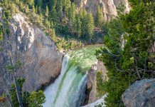 Die Lower Falls im Yellowstone Canyon sind nach Volumen gerechnet die größten Wasserfälle in den Rocky Mountains, USA - © James Camel / franks-travelbox.com