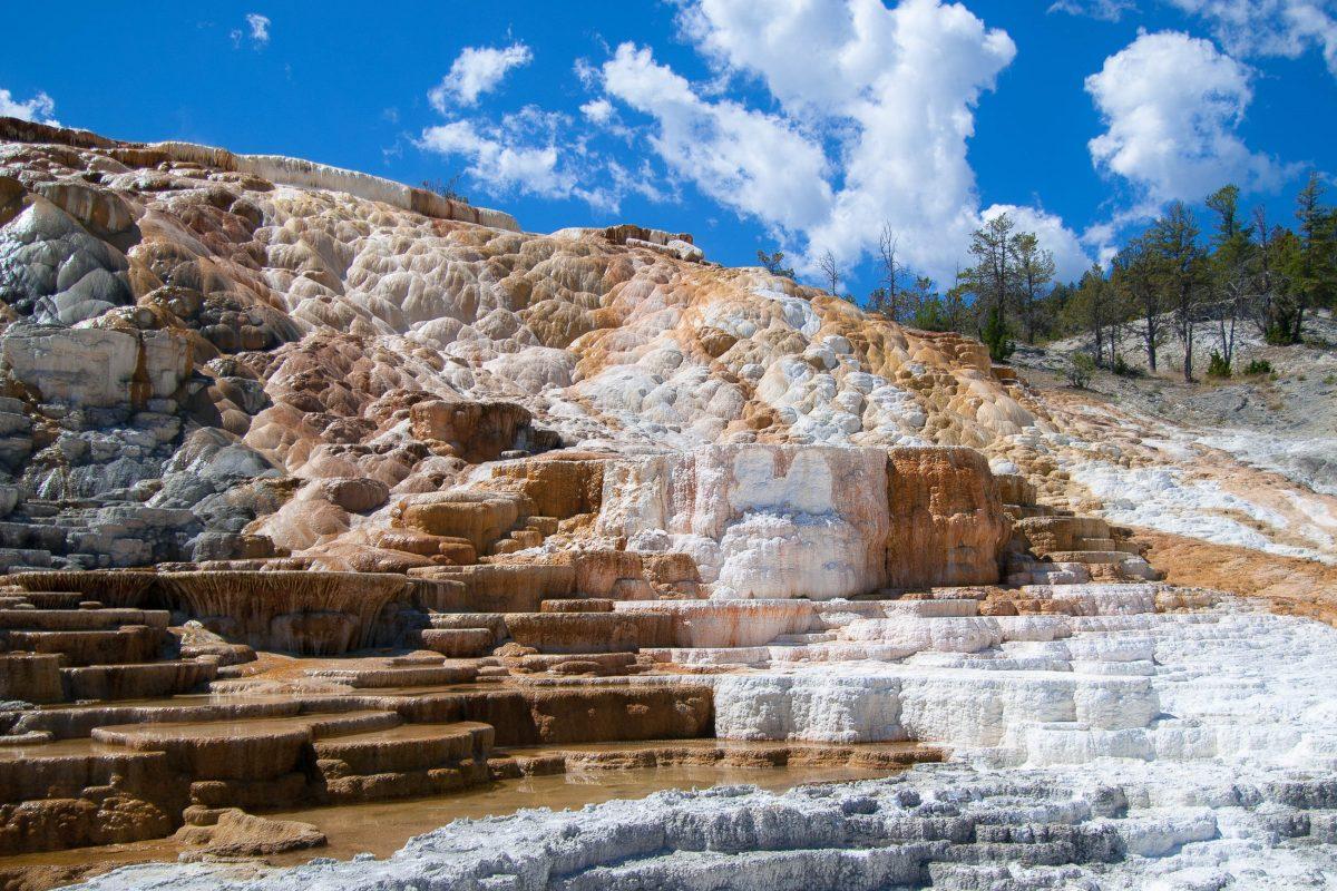 Die Mammoth Hot Springs mit ihren Kalkstein-Terassen am südlichen North Loop im Yellowstone Nationalpark, Wyoming, USA - © James Camel / franks-travelbox