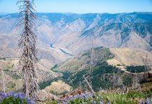 Traumhafter Blick in den Hells Canyon, die mit knapp 2.500 Metern tiefste Schlucht Nordamerikas, USA - © James Camel / franks-travelbox
