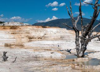 Vulkanische Aktivität hat die Umgebung von Mammoth Hot Springs in eine Landschaft aus farbigen Kalksinter-Terrassen verwandelt, USA - © James Camel / franks-travelbox.com