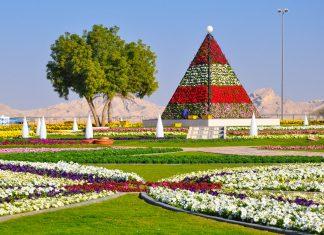In den Paradise Gardens von Al Ain, Abu Dhabi, formen rund 10 Millionen Blütenpflanzen Pyramiden, Herzen und geometrische Muster, VAE - © Ritu Manoj Jethani / Shutterstock