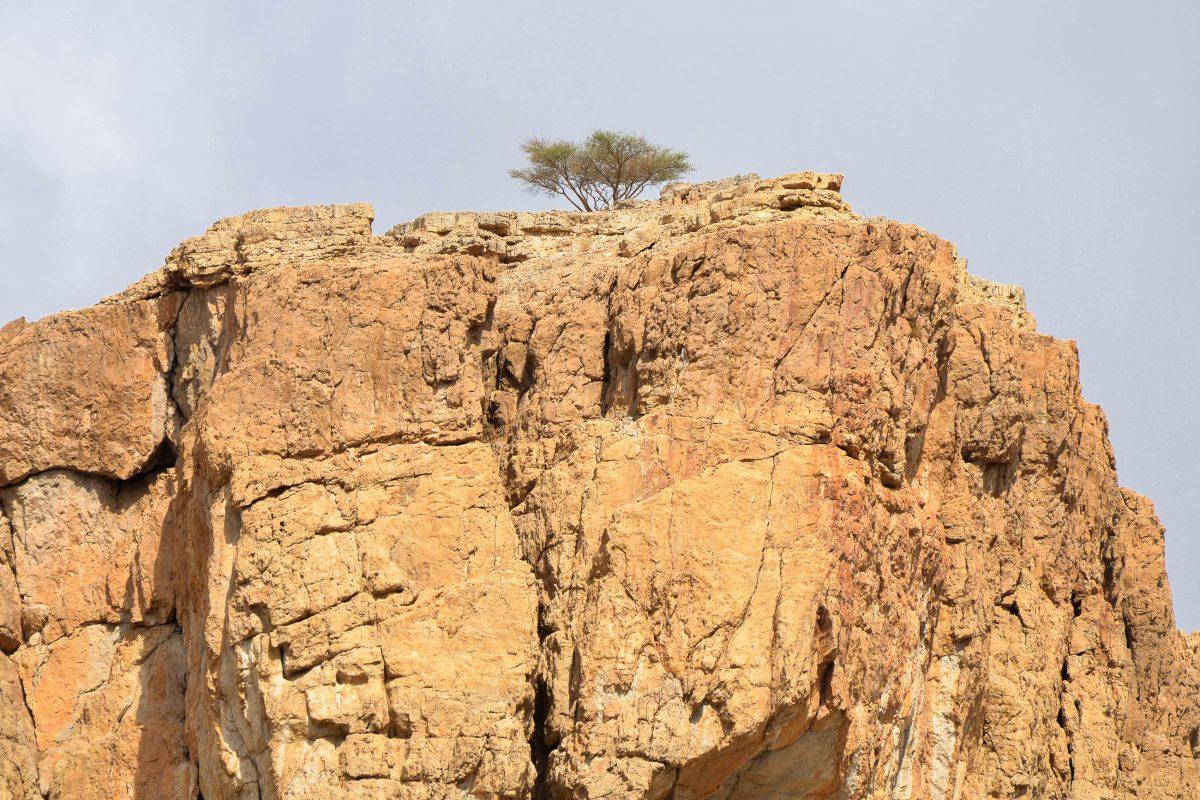 Blick auf eine imposante Felsformation im Wadi al Bih im Hadschar-Gebirge im Emirat Ras al Khaimah, VAE - © FRASHO / franks-travelbox