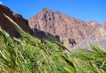 Blick von der Talsohle des Wadi Wurayah auf die umgebenden Berge, VAE - © FRASHO / franks-travelbox