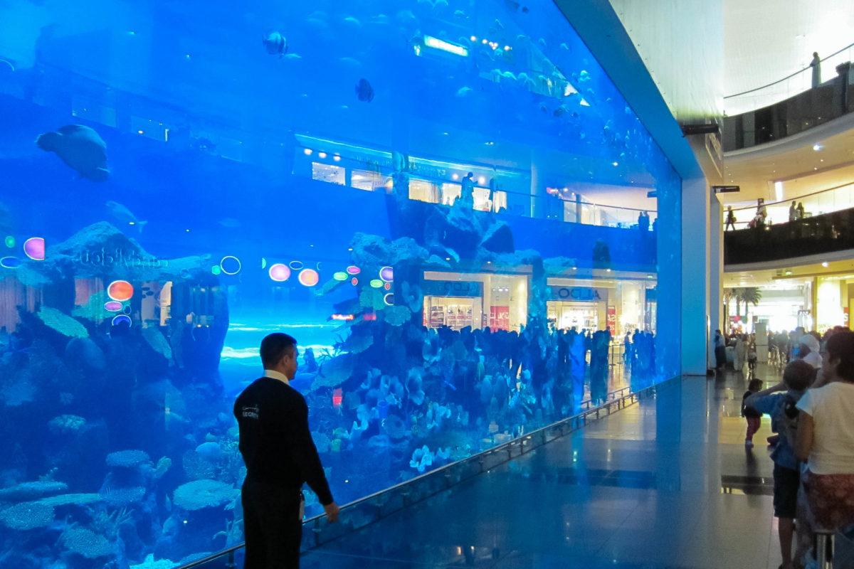 Hinter dem Glas des Dubai Aquariums tummeln sich 33.000 verschiedene Meerestiere, darunter Rochen, Haie, Barsche, Riesenkrabben, Pinguine und Robben, Dubai, VAE - © FRASHO / franks-travelbox