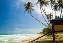 Blick auf den Paradise Beach. Isla Margarita, Venezuela - © Janne Hamalainen / Shutterstock