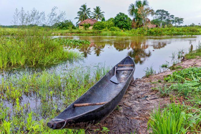 Das faszinierende Orinoco Delta ist der Parade-Dschungel von Venezuela und garantiert exotische Naturerlebnisse - © Vadim Petrakov / Shutterstock