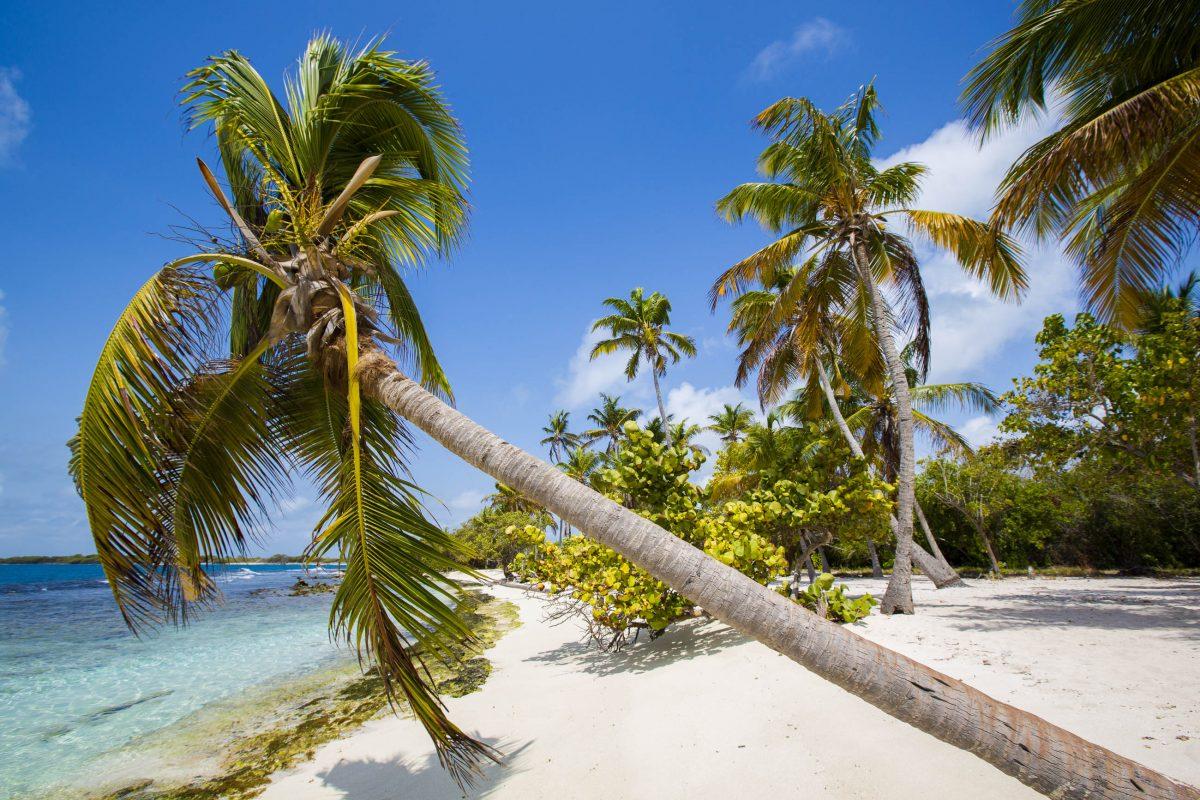 Der Nationalpark Morrocoy stellt für den Urlaub in Venezuela die perfekte Mischung aus Abenteuer und Erholung bereit - © Michel Piccaya / Shutterstock