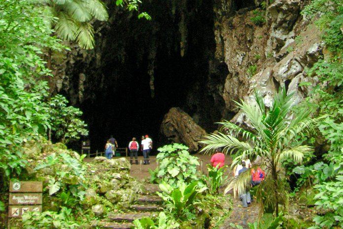 Die Guácharo-Höhle im gleichnamigen Nationalpark beeindruckt seine Besucher mit faszinierender Vegetation und spektakulären Vogelschwärmen, Venezuela - © blmurch CC BY2.0/Wiki