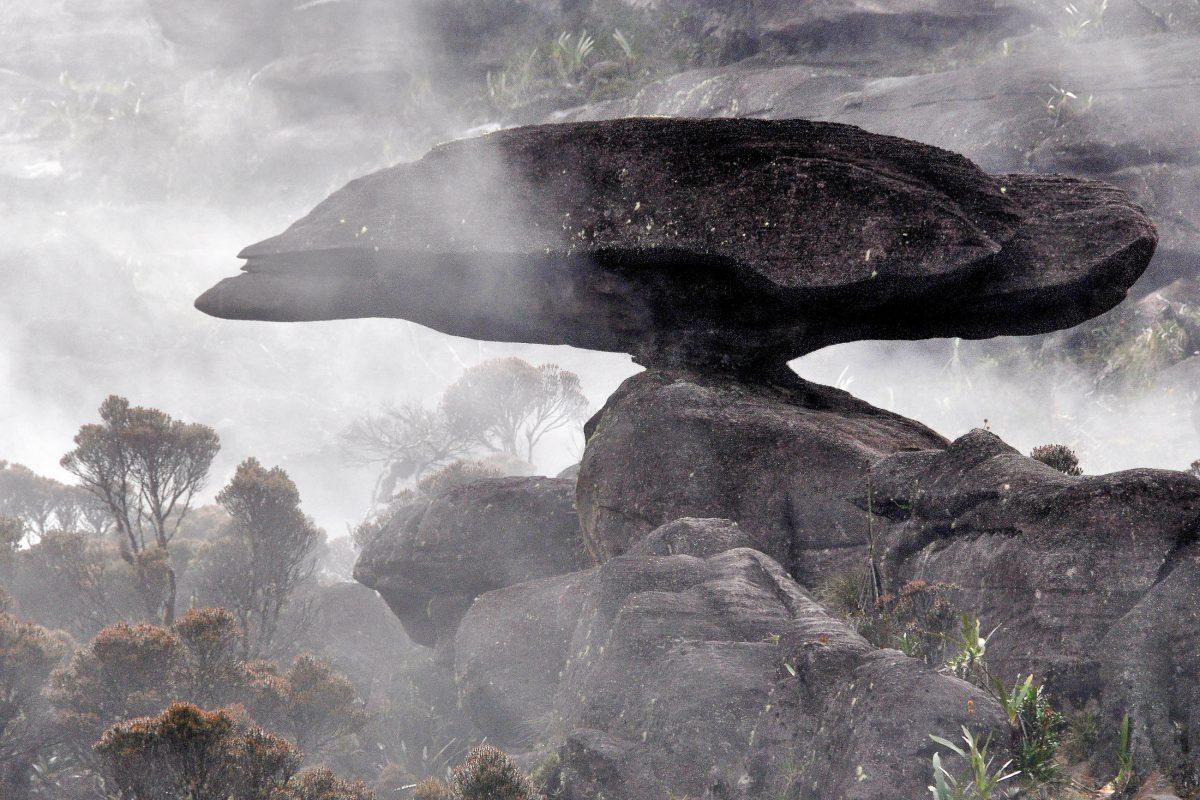 """Die unglaubliche Felsformation """"fliegende Schildkröte"""" am Hochplateau des Mount Roraima - © Harald Toepfer / Shutterstock"""