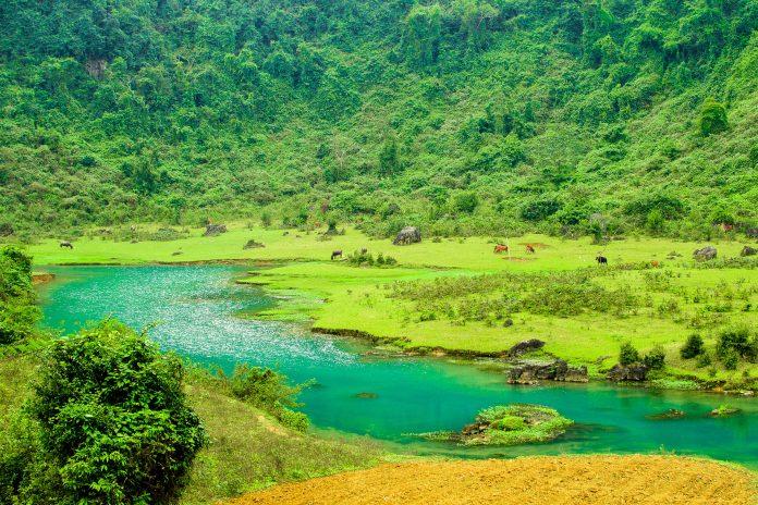 Der atemberaubende Nationalpark Phong Nha – Ke Bang liegt im Norden Zentralvietnams und ist vor seine unglaubliche Artenvielfalt und sein spektakuläres Höhlensystem bekannt - © Elzbieta Sekowska / Shutterstock