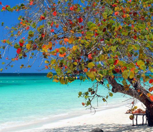 Der Sieben Meilen Strand an der Küste von Negril, Jamaika - © col / Shutterstock/ Shutterstock