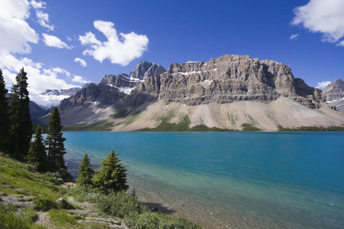Ufer des Bow Lake im Jasper National Park, Alberta, Kanada - © amelie - Fotolia
