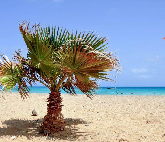 Am traumhaften Strand von Santa Maria im Süden von Sal scheint an durchschnittlich 330 Tagen im Jahr die Sonne - © Styve Reineck / Shutterstock
