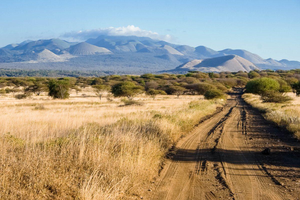 """Die typische Landschaft in den Tsavo-Nationalparks in Kenia inspirierte schon die Zeichenprofis von """"Der König der Löwen"""" - © erichon / Shutterstock"""
