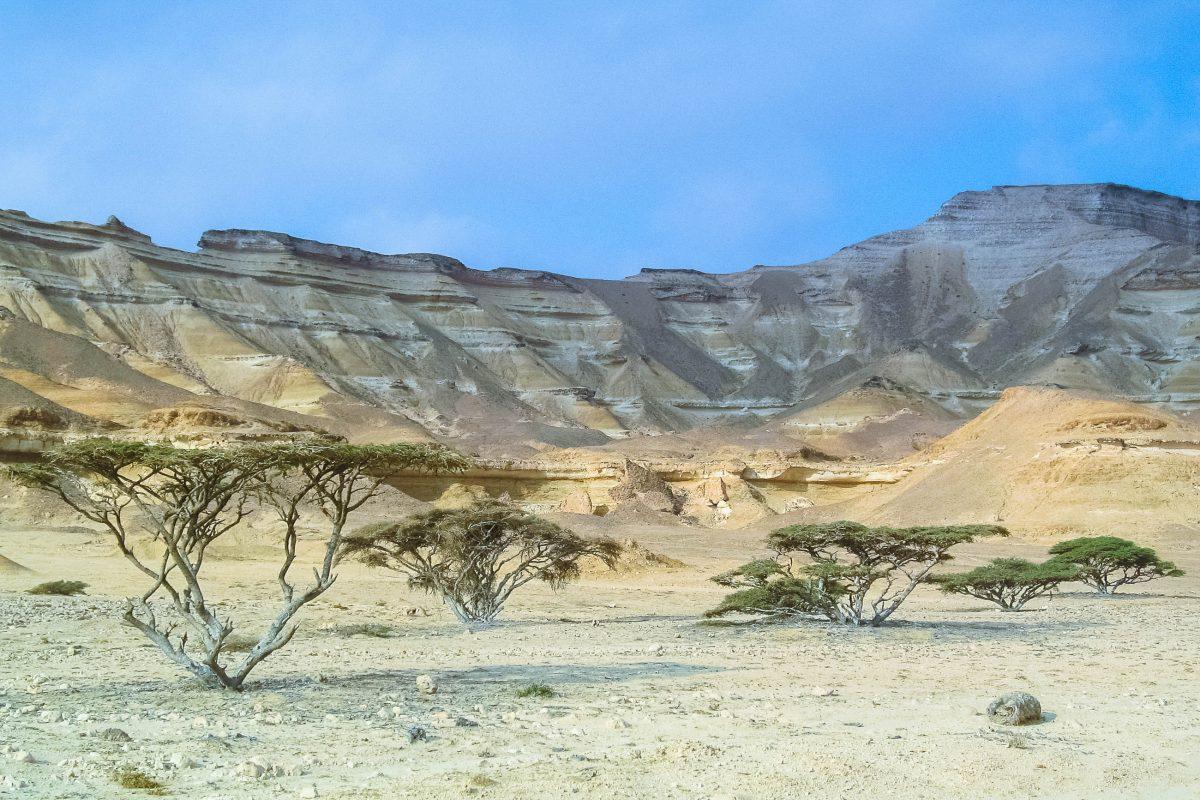 Das Wadi Shuwaymiyah gehört zu den schönsten Wadis im Oman, ist jedoch aufgrund seiner abgeschiedenen Lage in kaum einem Reiseführer erwähnt - © FRASHO / franks-travelbox